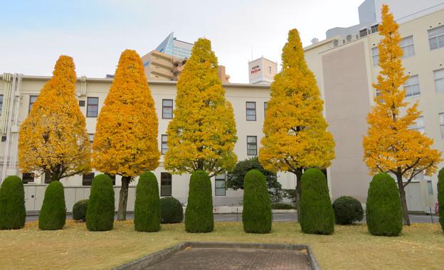 秋のノリタケの森 - 11