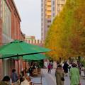 Photos: 秋のノリタケの森 - 13