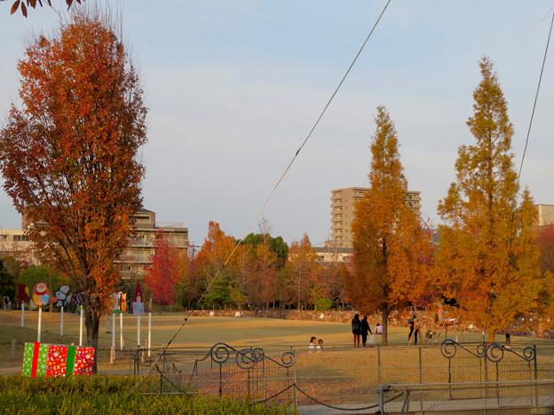 秋のノリタケの森 - 20