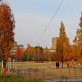 写真: 秋のノリタケの森 - 20