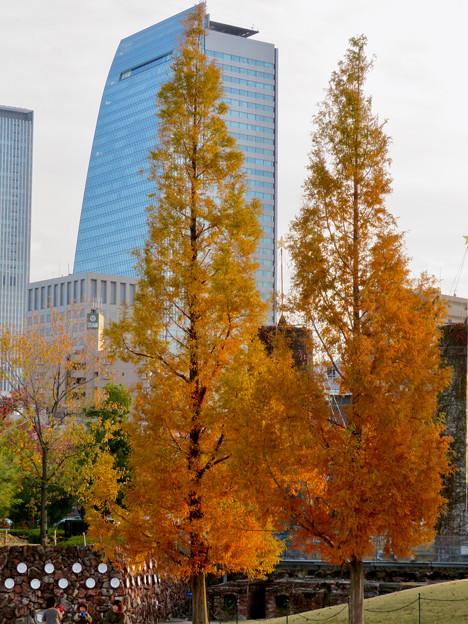 秋のノリタケの森 - 28