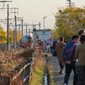 Photos: そぶえイチョウ黄葉まつり 2018 No - 34:名鉄尾西線沿いの黄葉