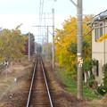 Photos: そぶえイチョウ黄葉まつり 2018 No - 89:名鉄尾西線沿いの黄葉