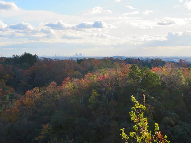 寂光院の展望台から見た景色 - 10:名古屋方面