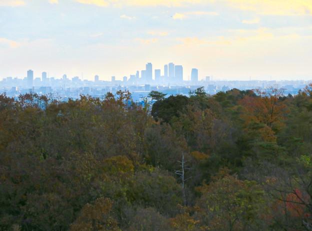 寂光院の展望台から見た景色 - 11:名駅ビル群