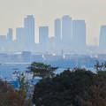 寂光院の展望台から見た景色 - 12:名駅ビル群