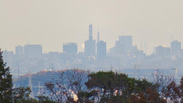 寂光院の展望台から見た景色 - 15:名古屋テレビ塔とNTTドコモ名古屋ビル