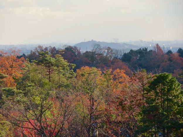 寂光院の展望台から見た景色 - 20:小牧山