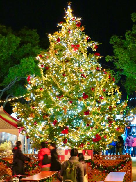 夜の名古屋クリスマスマーケット 2018 No - 5