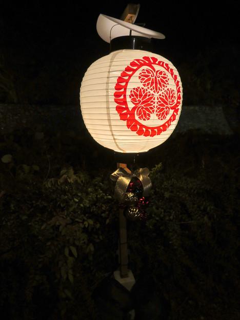 夜の金シャチ横丁「宗春ゾーン」 - 4