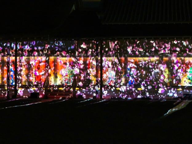 名古屋城×NAKED NIGHT CASTLE OWARI EDO FANTASIA 2018:本丸御殿の巨大横長プロジェクション・マッピング - 11