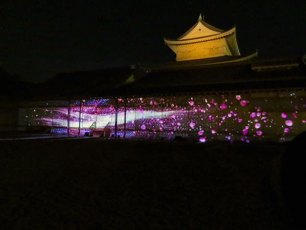 名古屋城×NAKED NIGHT CASTLE OWARI EDO FANTASIA 2018:本丸御殿の巨大横長プロジェクション・マッピング - 19