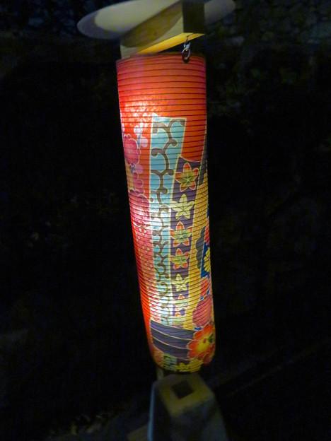 名古屋城×NAKED NIGHT CASTLE OWARI EDO FANTASIA 2018 No - 13:友禅提灯