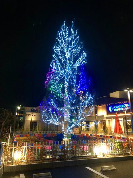 住宅展示場のクリスマスツリー - 1