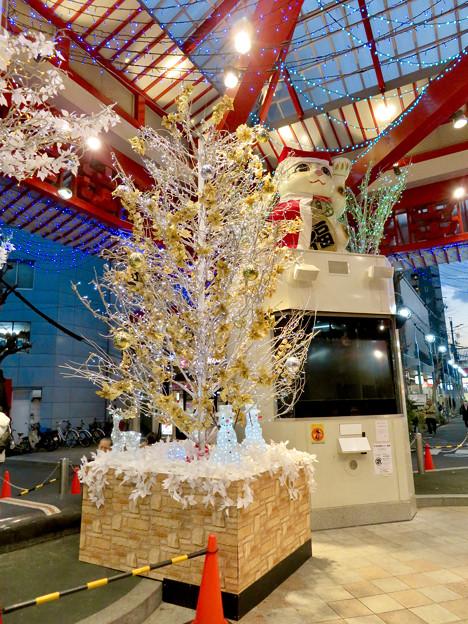 大須商店街:招き猫広場のクリスマスイルミネーション 2018 No - 2