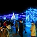 Photos: 名古屋港ガーデンふ頭:臨港緑園のクリスマスイルミネーション 2018 No - 1