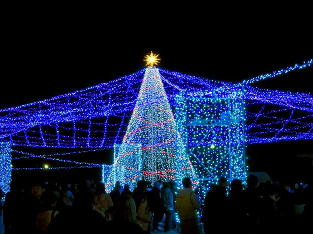 名古屋港ガーデンふ頭:臨港緑園のクリスマスイルミネーション 2018 No - 2