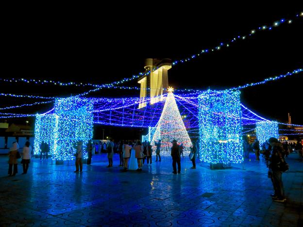 名古屋港ガーデンふ頭:臨港緑園のクリスマスイルミネーション 2018 No - 5