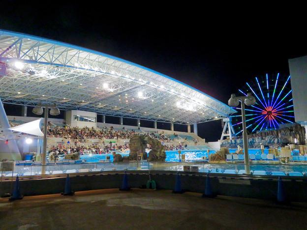 名古屋港水族館:夜のスタジアムとメインプール