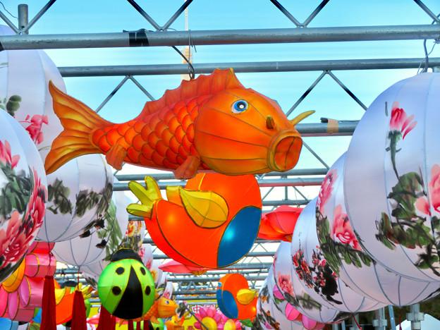 名古屋中国春節祭 2019(昼間)No - 16:鯉の形をした提灯