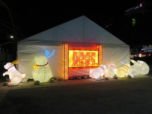 名古屋中国春節祭 2019(夜間)No - 2