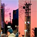 大須商店街:大須観音手前から見た中京テレビ本社ビルの電波塔 - 4