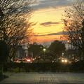 朝宮公園入り口の夕焼け - 2