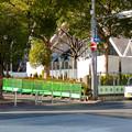 再整備工事中で封鎖されてた久屋大通公園(2019年1月27日) - 8