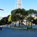 Photos: 再整備工事中で封鎖されてた久屋大通公園(2019年1月27日) - 18
