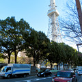 Photos: 再整備工事中で封鎖されてた久屋大通公園(2019年1月27日) - 19