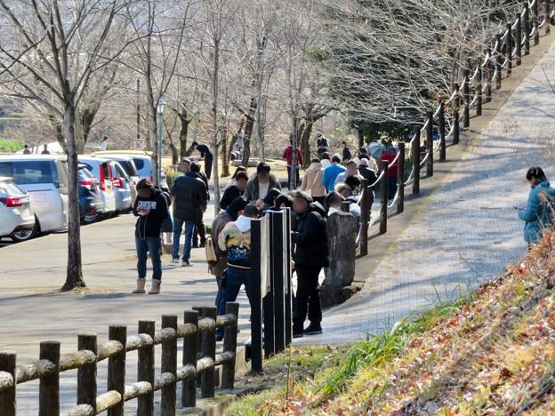身隠山古墳群に隣接する「学習ゾーン」? - 4:ポケモンGoをしていた人たち