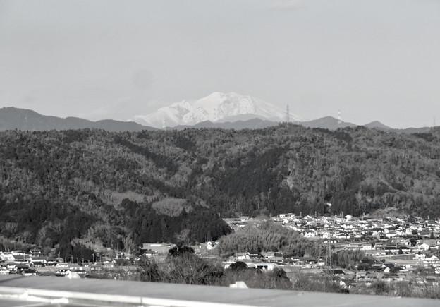 花フェスタ記念公園:花のタワーの展望階から見た景色 - 15(雪を頂く御嶽山と乗鞍岳、モノクロ)