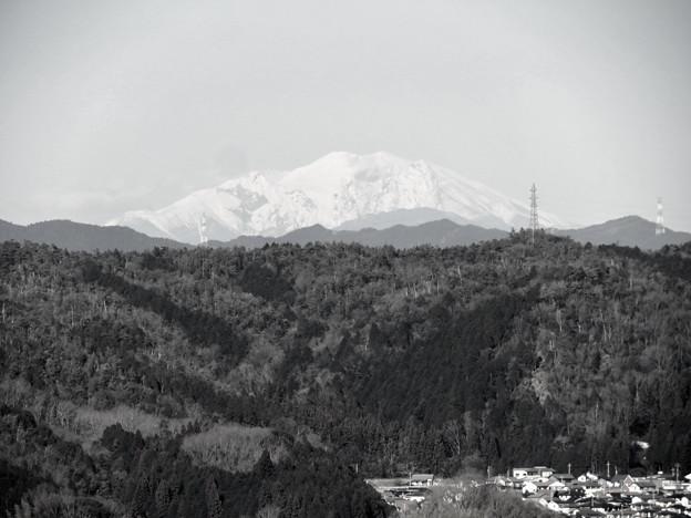 花フェスタ記念公園:花のタワーの展望階から見た景色 - 19(雪を頂く御嶽山と乗鞍岳、モノクロ)