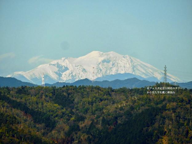 花フェスタ記念公園:花のタワーの展望階から見た景色 - 23(雪を頂く御嶽山と乗鞍岳)