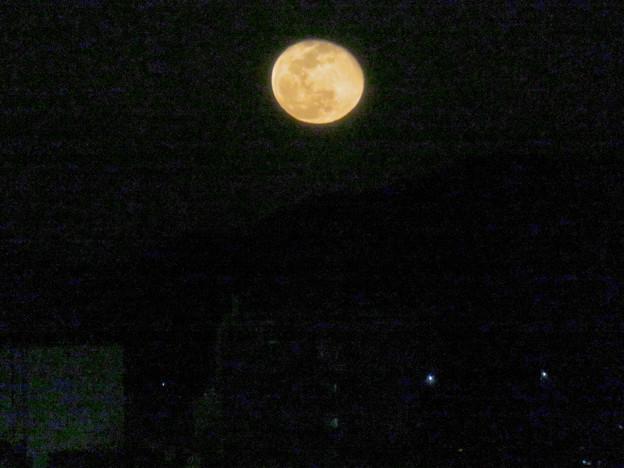 昇ったばかりの大きな月 - 1