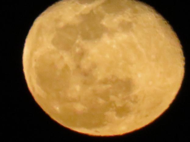 昇ったばかりの大きな月 - 2