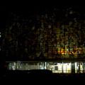 Photos: 昨日閉店し灯りの消えたザ・モール春日井のステンドグラス - 8