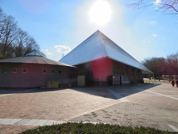 花フェスタ記念公園:イベントスペース「プリンセスホール雅」 - 5