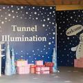 Photos: 花フェスタ記念公園:トンネルギャラリー「トンネル・イルミネーション 2019」 - 2