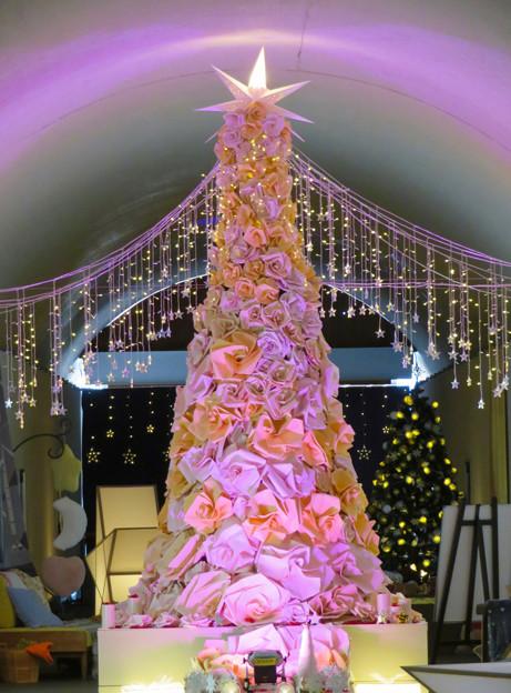 花フェスタ記念公園:トンネルギャラリー「トンネル・イルミネーション 2019」 - 8(ローズタワー)