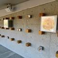 Photos: 花フェスタ記念公園:花の地球館 - 4