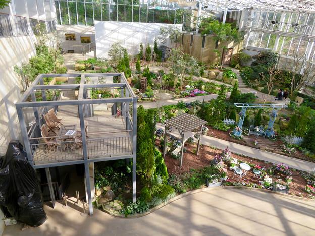 花フェスタ記念公園:花の地球館 - 17(大温室)