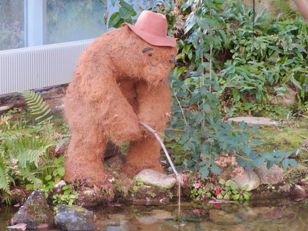 花フェスタ記念公園:花の地球館 - 25(大温室の可愛らしい熊の置き物)