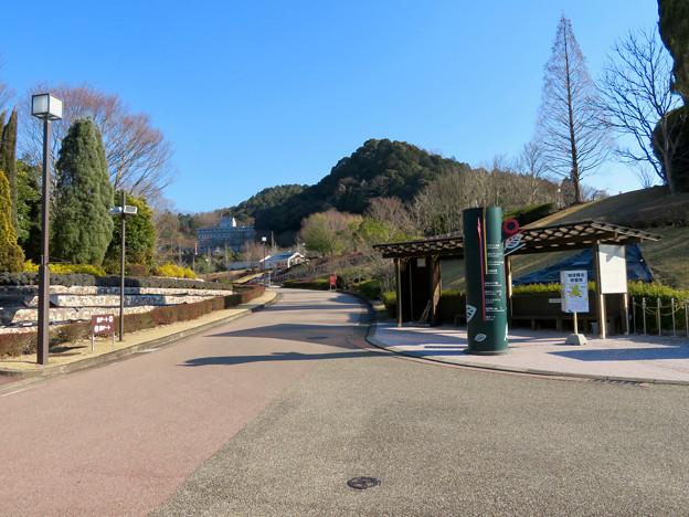 オフシーズン(2月)の花フェスタ記念公園 - 52