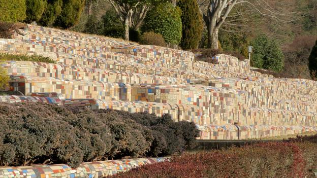 オフシーズン(2月)の花フェスタ記念公園 - 53