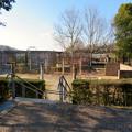 Photos: オフシーズン(2月)の花フェスタ記念公園 - 67:ロイヤルローズガーデン