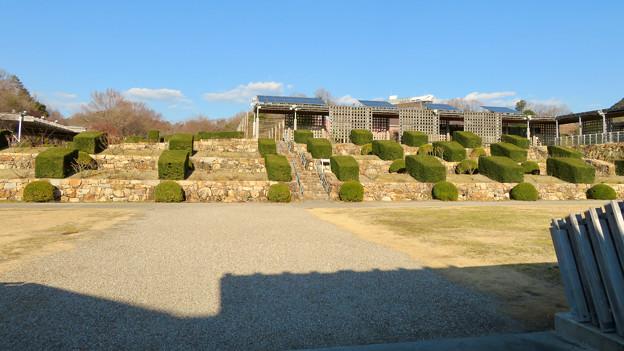 オフシーズン(2月)の花フェスタ記念公園 - 72