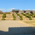 Photos: オフシーズン(2月)の花フェスタ記念公園 - 72