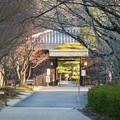 Photos: オフシーズン(2月)の花フェスタ記念公園 - 74:茶室「織部庵」入り口