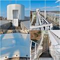 Photos: 花フェスタ記念公園:花のタワーの展望階 - 4